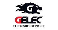 For-et-Mat gelec-thermic-genset